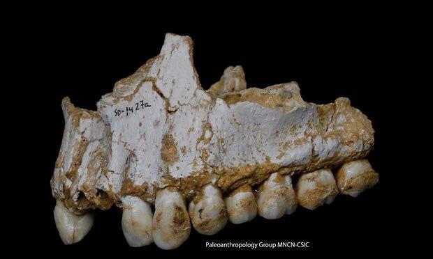 Photo: Paleoanthropology Group MNCN-CSIC